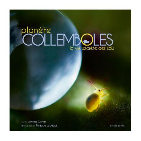 Planète COLLEMBOLES : la vie secrète des sols
